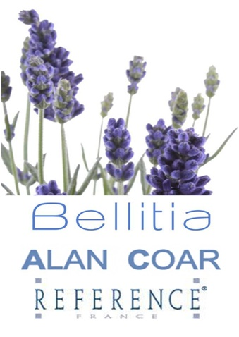 Bellitia – Touches